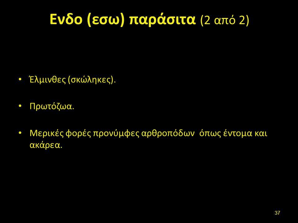 Ενδο (εσω) παράσιτα (2 από 2) Έλμινθες (σκώληκες).