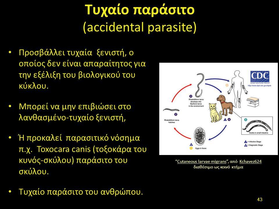 Τυχαίο παράσιτο (accidental parasite) Προσβάλλει τυχαία ξενιστή, ο οποίος δεν είναι απαραίτητος για την εξέλιξη του βιολογικού του κύκλου.