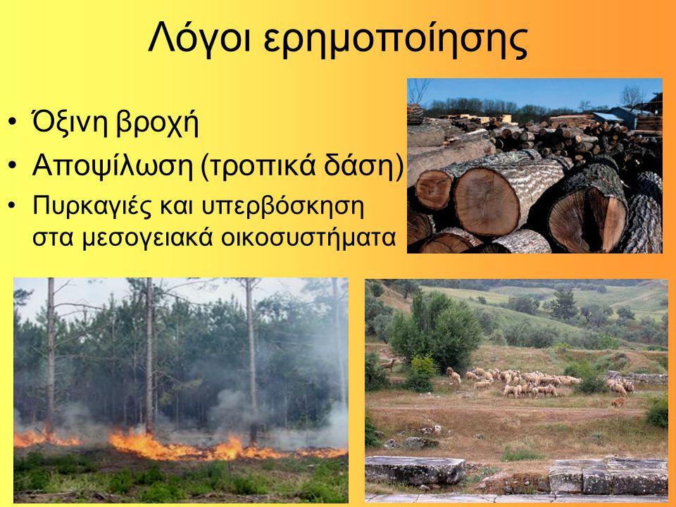 Λόγοι ερημοποίησης Όξινη βροχή Αποψίλωση (τροπικά δάση) Πυρκαγιές και υπερβόσκηση στα μεσογειακά οικοσυστήματα