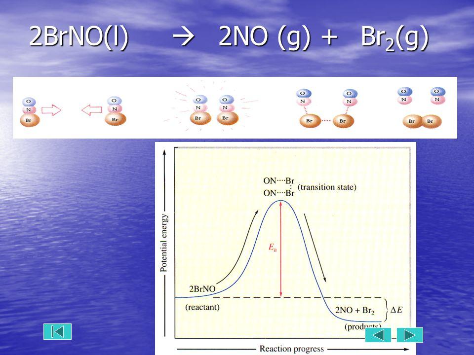 2BrNO(l)  2NO (g) +Br 2 (g)