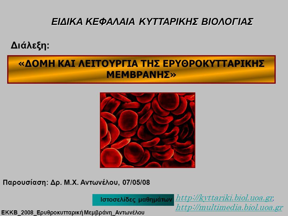 ΣΚΕΛΕΤΟΣ βιμεντίνη δεσμίνη Εκχύλιση κυττάρου με Triton X-100 3D structure ΕΚΚΒ_2008_Ερυθροκυτταρική Μεμβράνη_Αντωνέλου