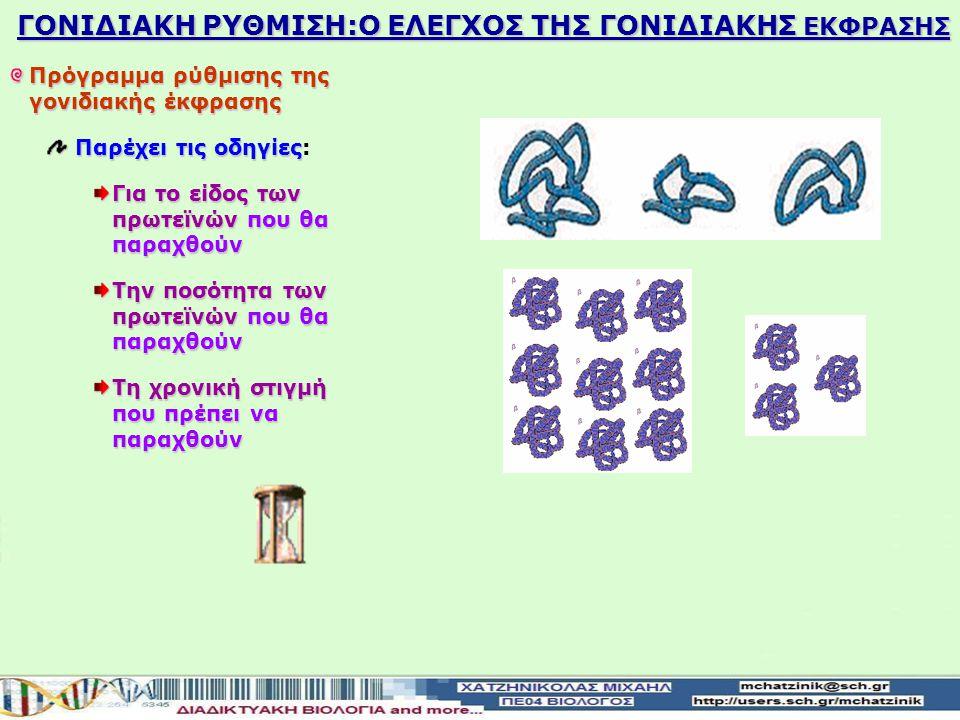 ΓΟΝΙΔΙΑΚΗ ΡΥΘΜΙΣΗ:Ο ΕΛΕΓΧΟΣ ΤΗΣ ΓΟΝΙΔΙΑΚΗΣ ΕΚΦΡΑΣΗΣ Γονιδιακή έκφραση αναφέρεται σε όλη τη διαδικασία με την οποία ένα γονίδιο ενεργοποιείται για να π