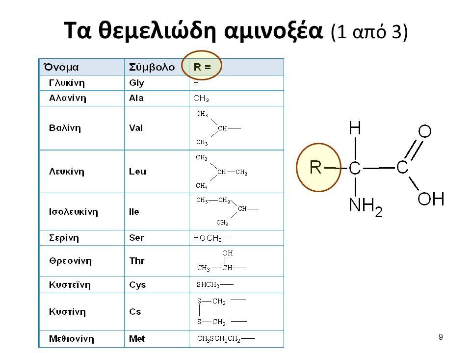 Τα θεμελιώδη αμινοξέα (1 από 3) 9