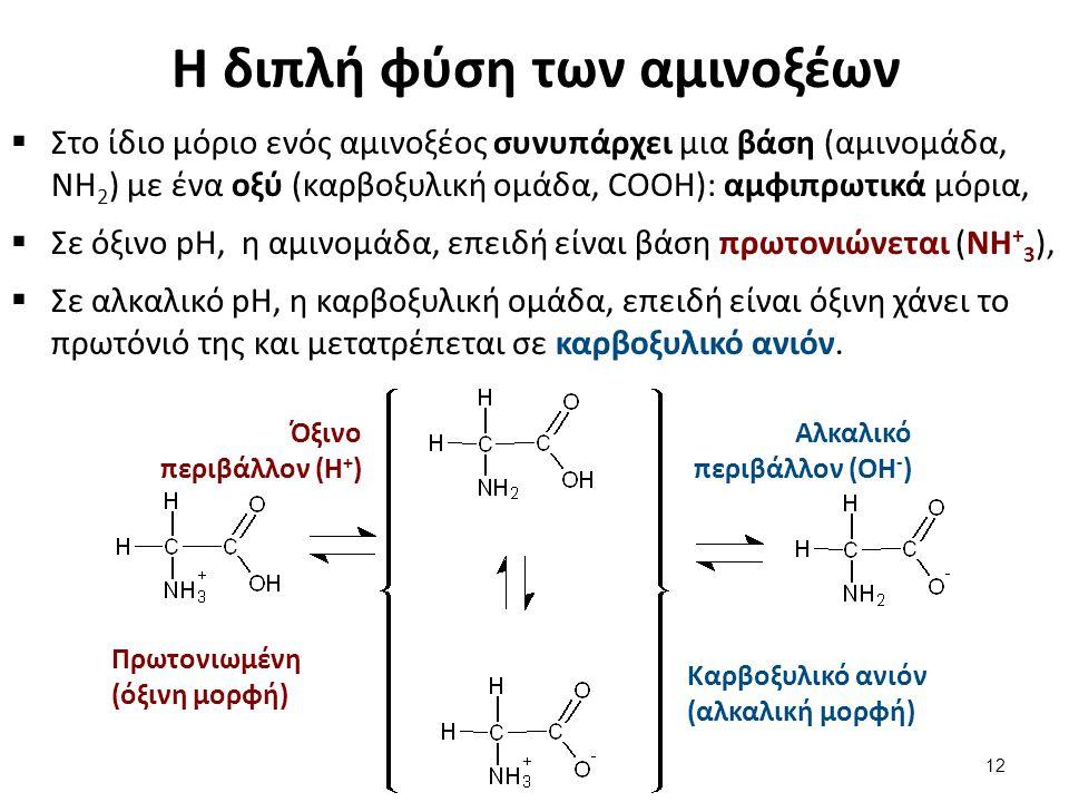 Η διπλή φύση των αμινοξέων  Στο ίδιο μόριο ενός αμινοξέος συνυπάρχει μια βάση (αμινομάδα, ΝΗ 2 ) με ένα οξύ (καρβοξυλική ομάδα, COOH): αμφιπρωτικά μό