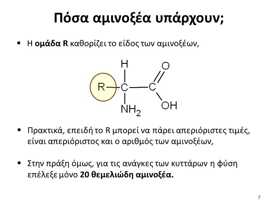 Πόσα αμινοξέα υπάρχουν;  Η ομάδα R καθορίζει το είδος των αμινοξέων,  Πρακτικά, επειδή το R μπορεί να πάρει απεριόριστες τιμές, είναι απεριόριστος κ