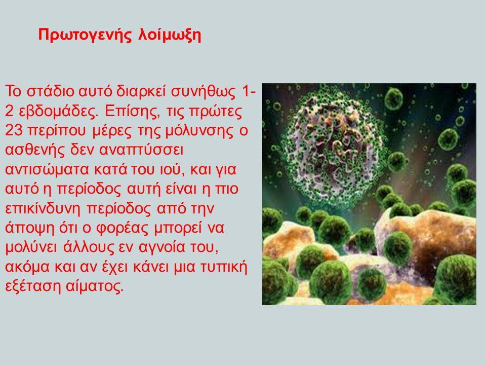 Πρωτογ ενής λοίμωξ η Το στάδιο αυτό διαρκεί συνήθως 1-2 εβδομάδες,τις πρώτες 23 περίπου μέρες της μόλυνσης ο ασθενής δεν αναπτύσσει αντισώματα κατά το