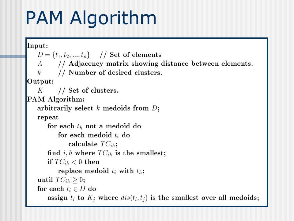 PAM Algorithm