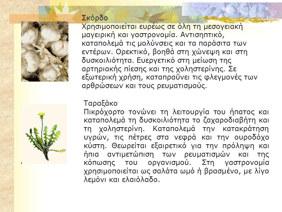 Σκόρδο Χρησιμοποιείται ευρέως σε όλη τη μεσογειακή μαγειρική και γαστρονομία.