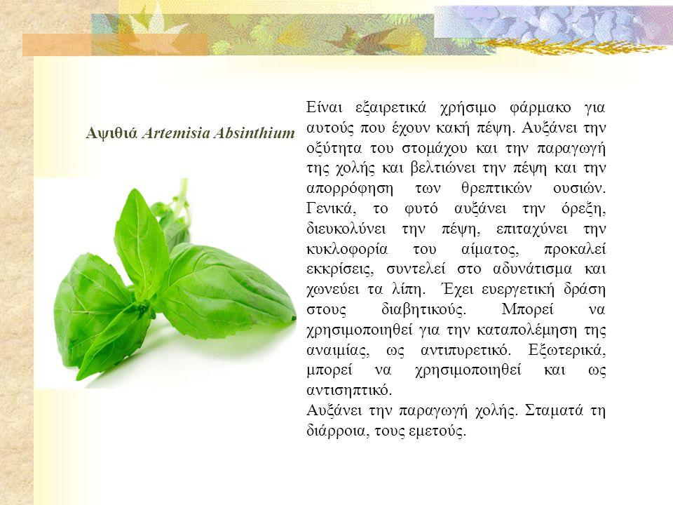 Βαλεριάνα Valeriana officinalis Είναι ηρεμιστικό,υπνωτικό και αγχολυτικό φυτό.