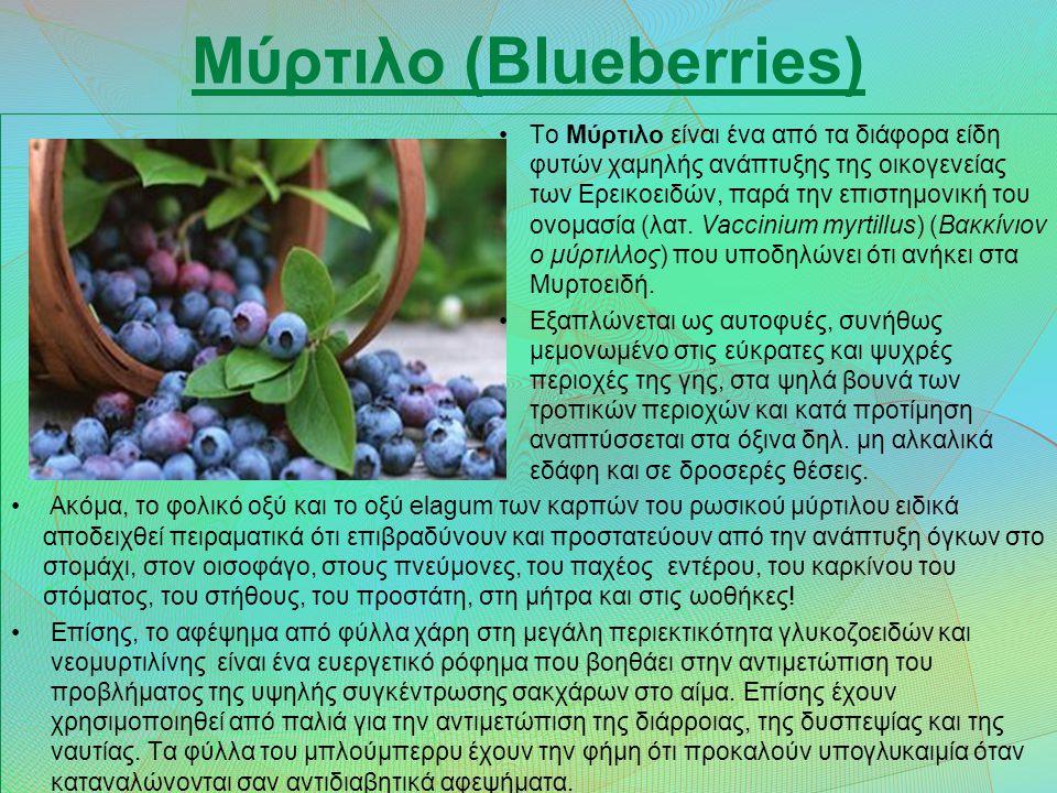 Μύρτιλο (Blueberries) Το Μύρτιλο είναι ένα από τα διάφορα είδη φυτών χαμηλής ανάπτυξης της οικογενείας των Ερεικοειδών, παρά την επιστημονική του ονομασία (λατ.