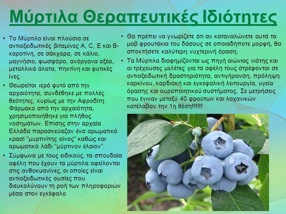 Μύρτιλα Θεραπευτικές Ιδιότητες Το Μύρτιλο είναι πλούσια σε αντιοξειδωτικές βιταμίνες Α, C, Ε και Β- καροτίνη, σε σάκχαρα, σε κάλιο, μαγνήσιο, φωσφόρο, ανόργανα οξέα, μεταλλικά άλατα, πηκτίνη και φυτικές ίνες.