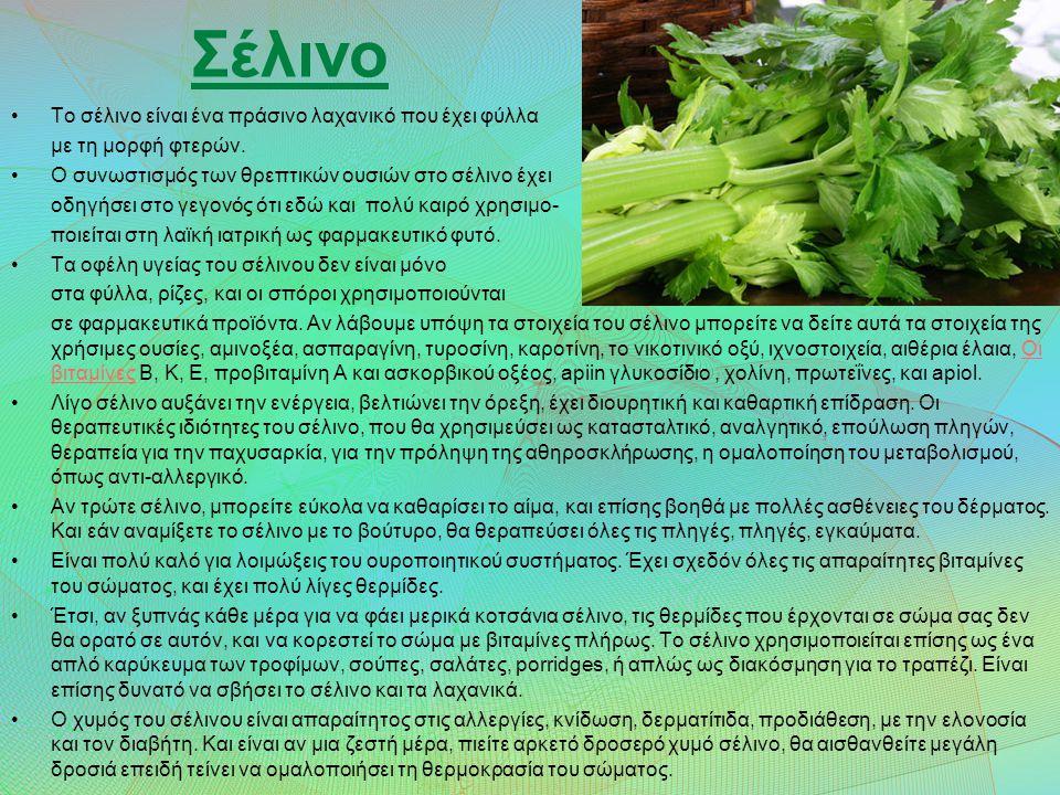 Σέλινο Το σέλινο είναι ένα πράσινο λαχανικό που έχει φύλλα με τη μορφή φτερών.