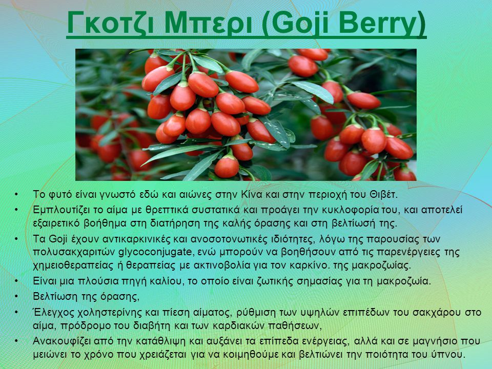 Γκοτζι Μπερι (Goji Berry) Το φυτό είναι γνωστό εδώ και αιώνες στην Κίνα και στην περιοχή του Θιβέτ.