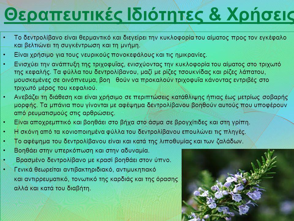 Δίκταμο Το Δίκταμο (η έρωντας) είναι ένα ενδημικό φυτό που συναντάται στην Κρήτη και χρησιμοποιείται ως ρόφημα.
