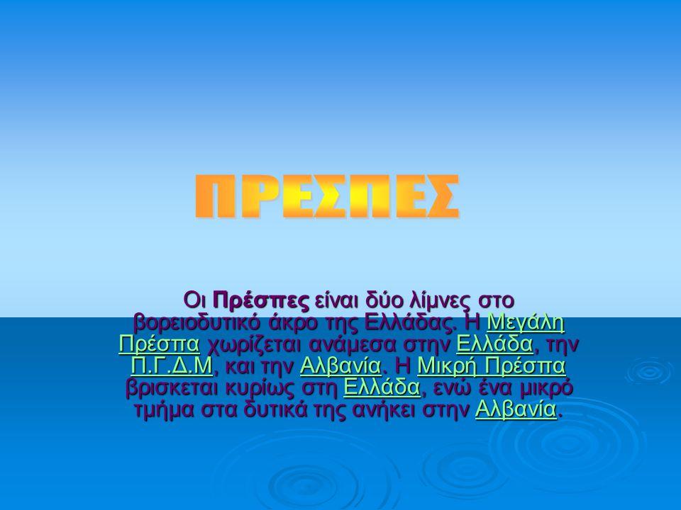 Οι Πρέσπες είναι δύο λίμνες στο βορειοδυτικό άκρο της Ελλάδας. Η Μεγάλη Πρέσπα χωρίζεται ανάμεσα στην Ελλάδα, την Π.Γ.Δ.Μ, και την Αλβανία. Η Μικρή Πρ