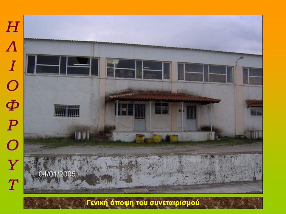 Χώρος παραλαβής των τελάρων και τοποθέτηση στο Αναβατόριο για μεταφορά των πορτοκαλιών στη γραμμή παραγωγής