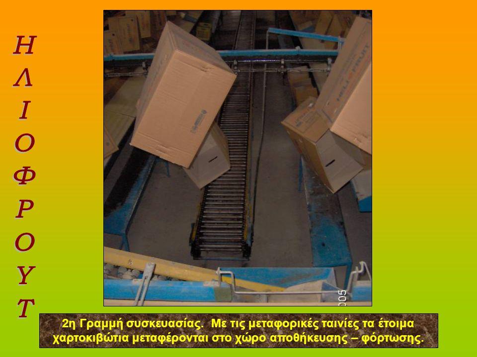 2η Γραμμή συσκευασίας. Με τις μεταφορικές ταινίες τα έτοιμα χαρτοκιβώτια μεταφέρονται στο χώρο αποθήκευσης – φόρτωσης.