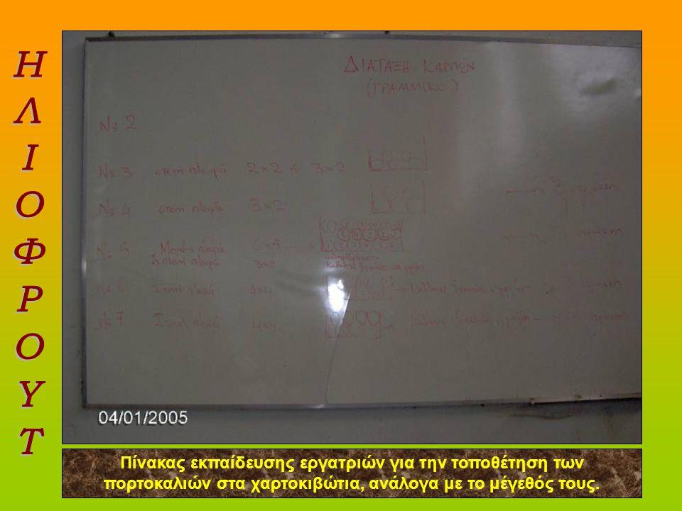 Υπότιτλος Πίνακας εκπαίδευσης εργατριών για την τοποθέτηση των πορτοκαλιών στα χαρτοκιβώτια, ανάλογα με το μέγεθός τους.