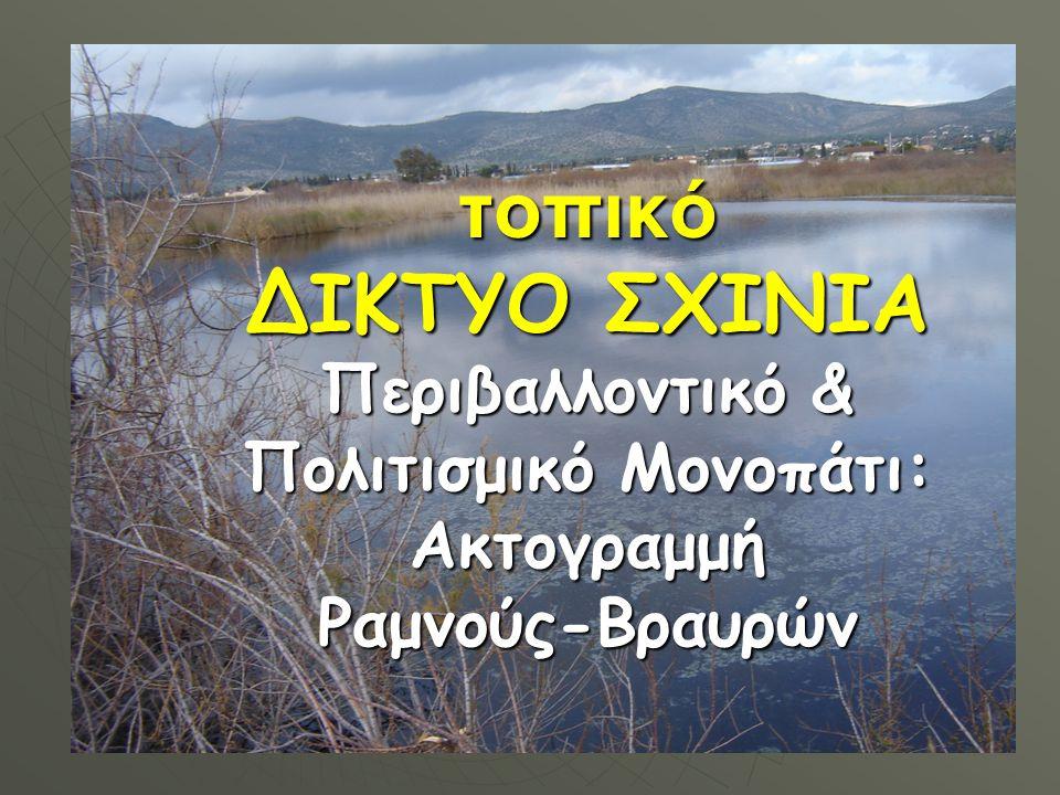 τοπικό ΔΙΚΤΥΟ ΣΧΙΝΙΑ Περιβαλλοντικό & Πολιτισμικό Μονοπάτι: Ακτογραμμή Ραμνούς-Βραυρών