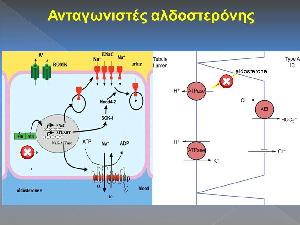 Ανταγωνιστές αλδοστερόνης aldosterone