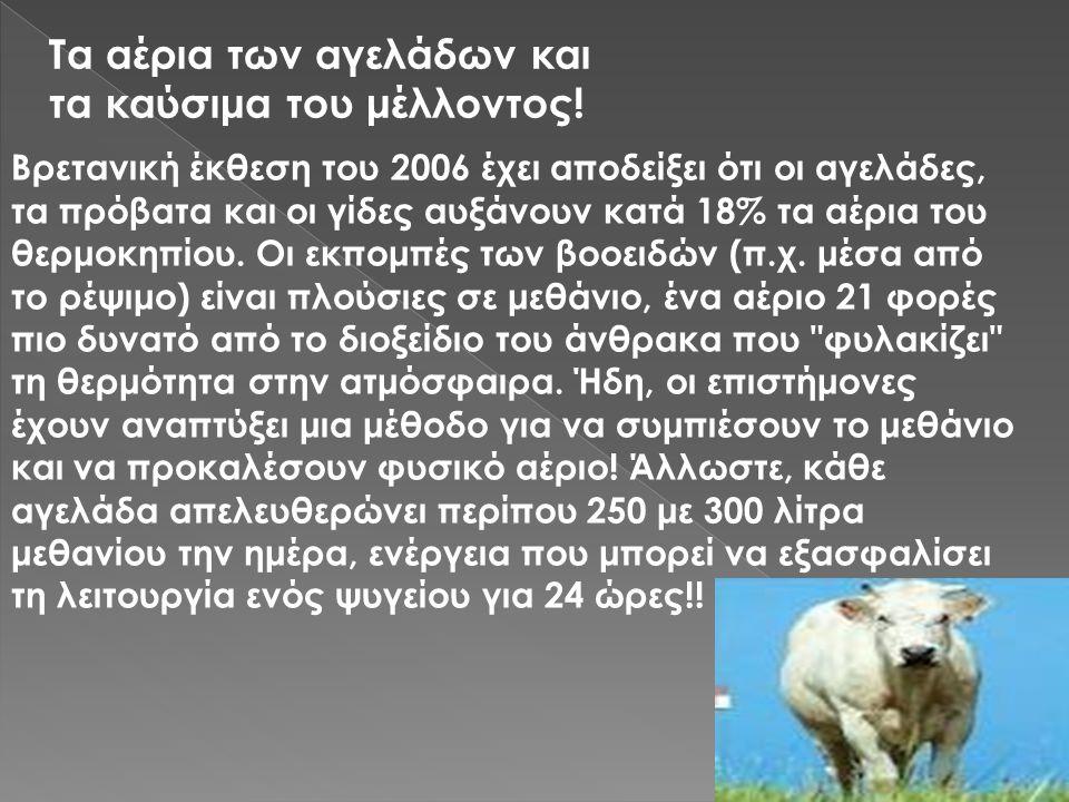 Βρετανική έκθεση του 2006 έχει αποδείξει ότι οι αγελάδες, τα πρόβατα και οι γίδες αυξάνουν κατά 18% τα αέρια του θερμοκηπίου. Οι εκπομπές των βοοειδών