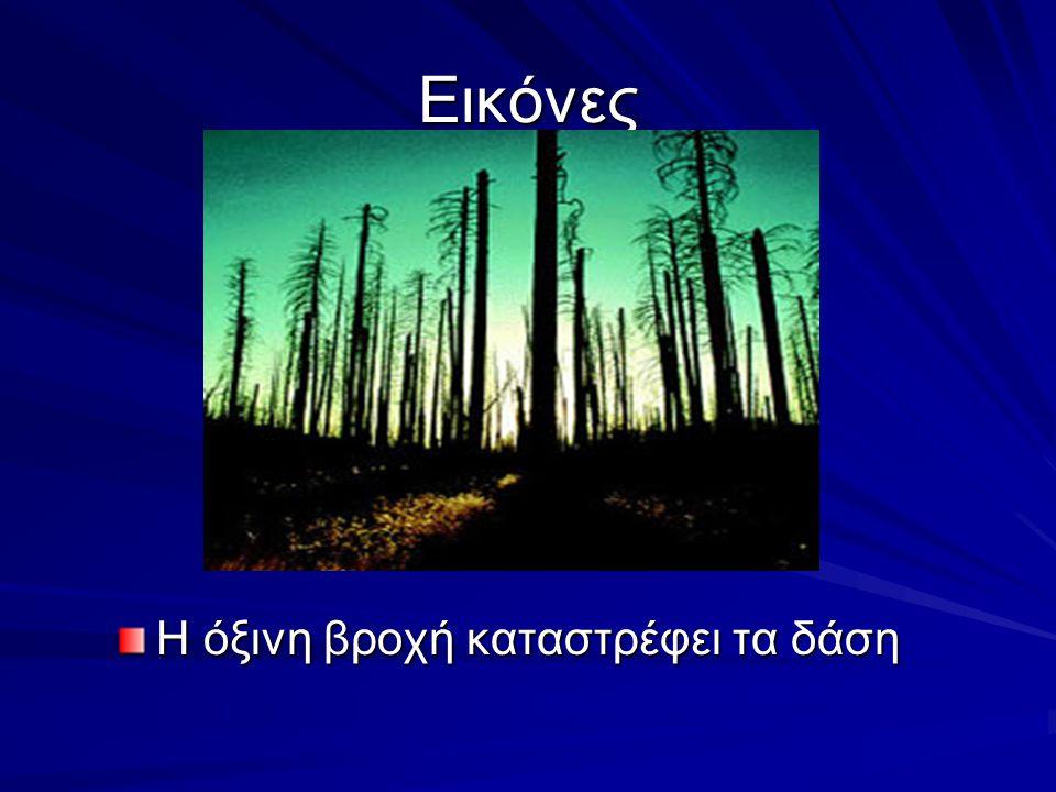 Εικόνες Η όξινη βροχή καταστρέφει τα δάση