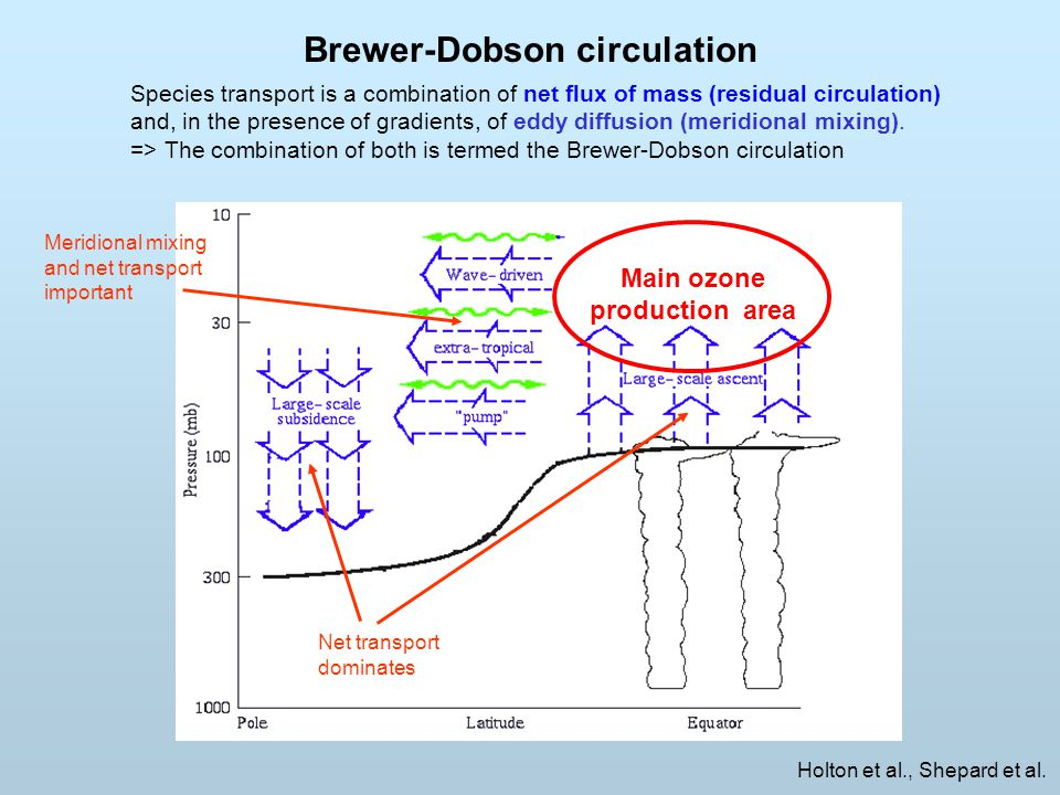 Brewer-Dobson circulation Holton et al., Shepard et al. Main ozone production area Species transport is a combination of net flux of mass (residual ci