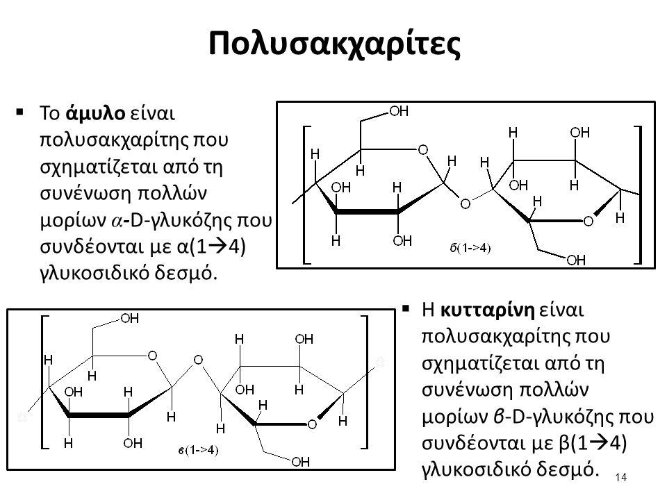 Πολυσακχαρίτες  Το άμυλο είναι πολυσακχαρίτης που σχηματίζεται από τη συνένωση πολλών μορίων α -D-γλυκόζης που συνδέονται με α(1  4) γλυκοσιδικό δεσ
