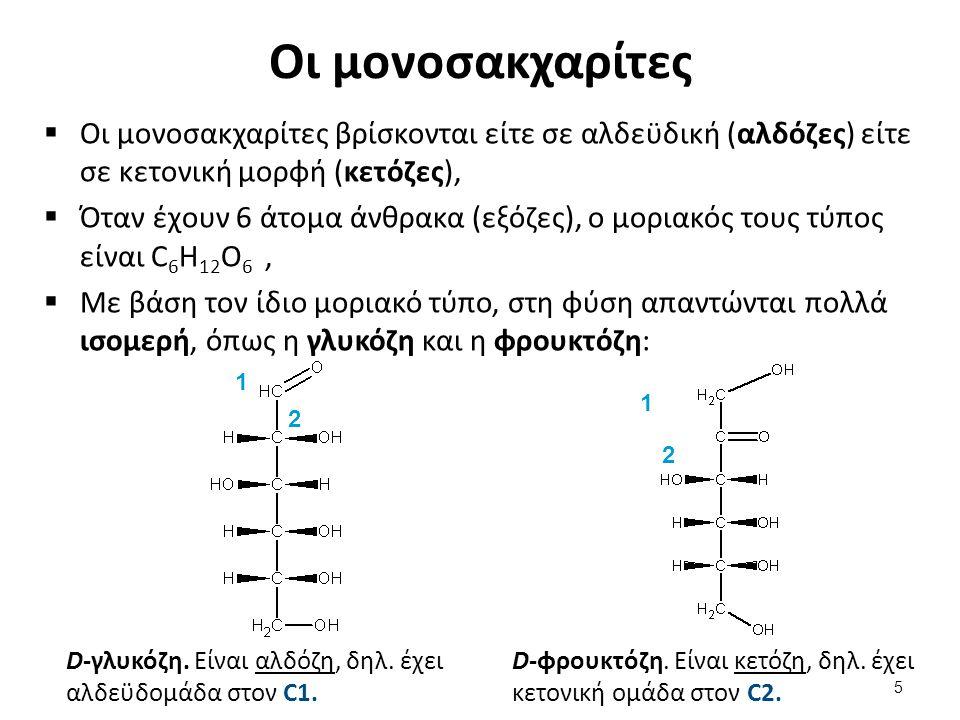 Οι μονοσακχαρίτες  Οι μονοσακχαρίτες βρίσκονται είτε σε αλδεϋδική (αλδόζες) είτε σε κετονική μορφή (κετόζες),  Όταν έχουν 6 άτομα άνθρακα (εξόζες),