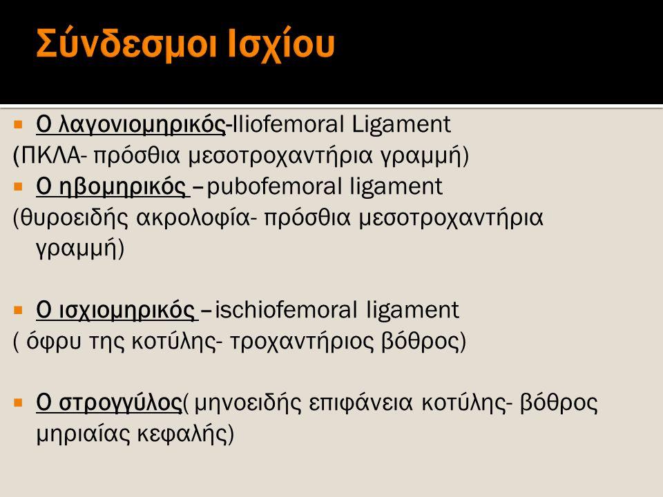  Ο λαγονιομηρικός-Iliofemoral Ligament (ΠΚΛΑ- πρόσθια μεσοτροχαντήρια γραμμή)  Ο ηβομηρικός –pubofemoral ligament (θυροειδής ακρολοφία- πρόσθια μεσο