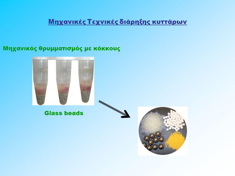 Μηχανικές Τεχνικές διάρηξης κυττάρων Μηχανικός θρυμματισμός με κόκκους Glass beads