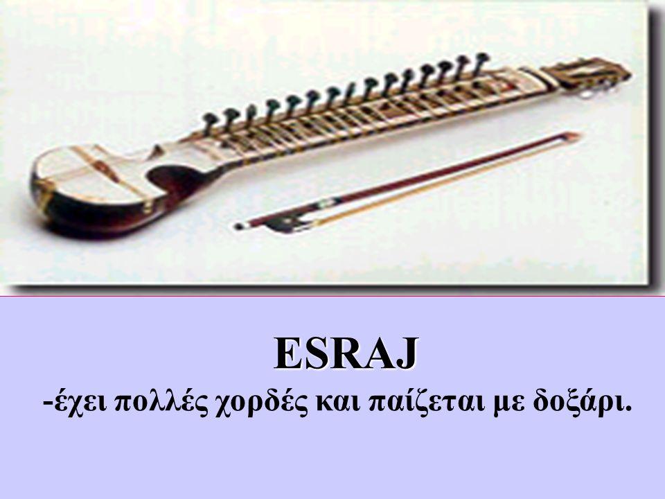 ESRAJ -έχει πολλές χορδές και παίζεται με δοξάρι.
