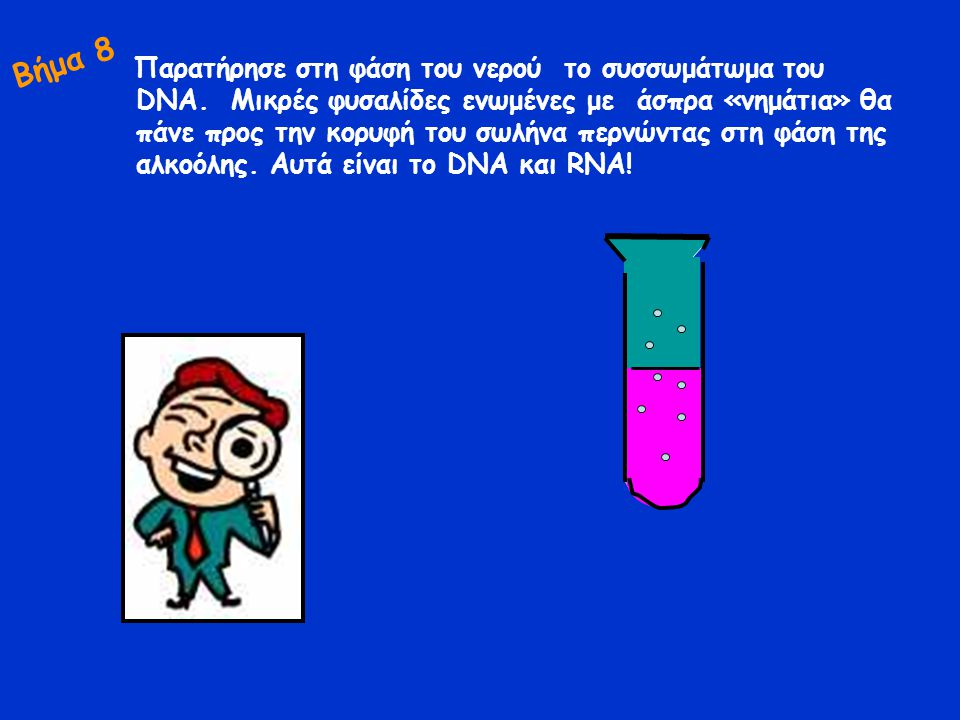 Μπορείτε με ένα καλαμάκι ή ένα μεταλλικό αντικείμενο να συλλέξετε το DNA, να το τοποθετήσετε σε μαύρο χαρτόνι, να περιμένετε να απορροφηθούν τα υγρά και να το παρατηρήσετε σε στερεοσκόπιο σε μεγέθυνση χ 20 και χ 40.