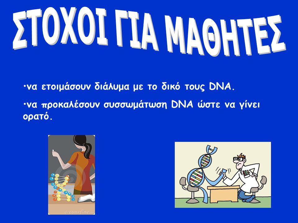 το DNA βρίσκεται στα κύτταρα όλων των ζωντανών οργανισμών οι μαθητές θα δουν τα συσσωματώματα κυρίως του DNA τους Για την απελευθέρωση του DNA από τις μεμβράνες θα χρησιμοποιηθεί κατάλληλο διάλυμα εκχύλισης Το DNA θα σχηματίσει συσσωμάτωμα με την προσθήκη αλκοόλης κι έτσι θα είναι ορατό