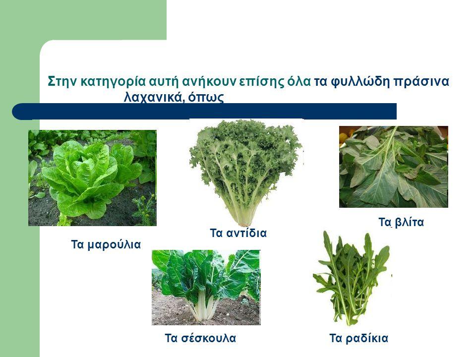 Τα μαρούλια Τα αντίδια Τα ραδίκιαΤα σέσκουλα Τα βλίτα Στην κατηγορία αυτή ανήκουν επίσης όλα τα φυλλώδη πράσινα λαχανικά, όπως