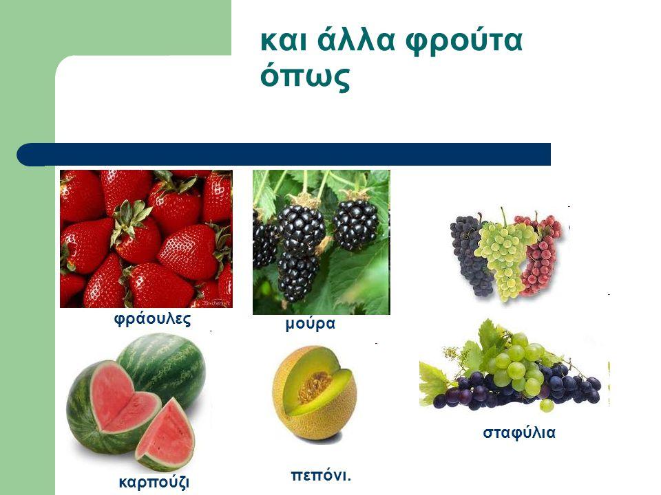 και άλλα φρούτα όπως πεπόνι. φράουλες σταφύλια μούρα καρπούζι