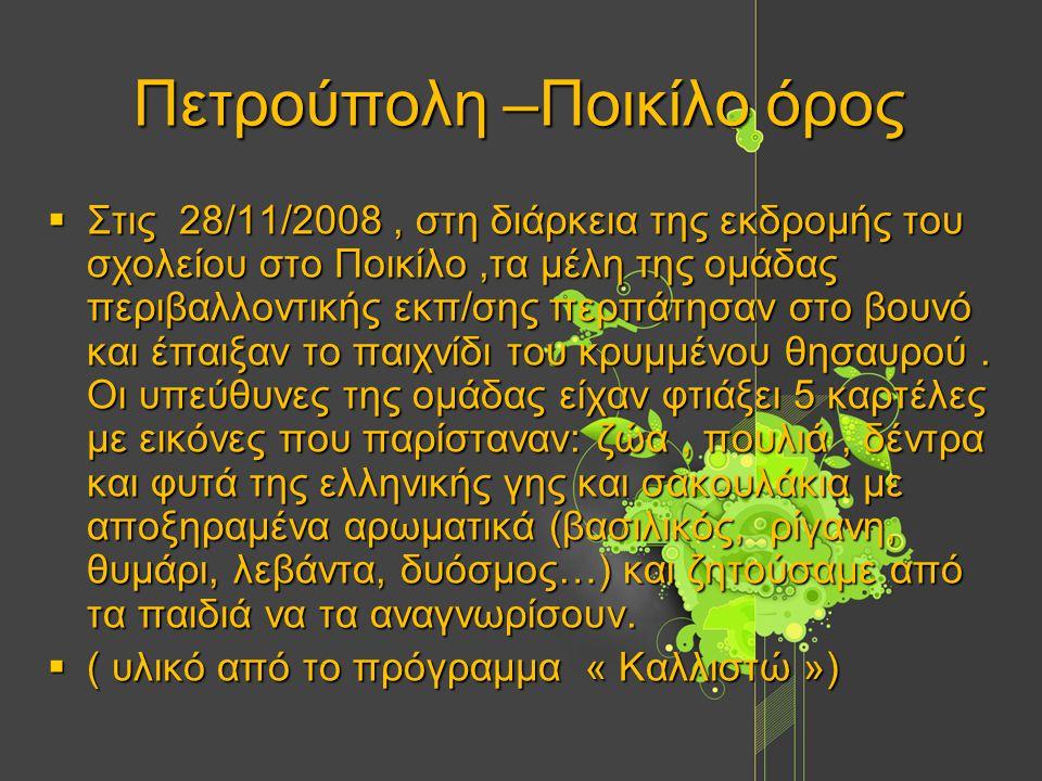 Πετρούπολη –Ποικίλο όρος  Στις 28/11/2008, στη διάρκεια της εκδρομής του σχολείου στο Ποικίλο,τα μέλη της ομάδας περιβαλλοντικής εκπ/σης περπάτησαν στο βουνό και έπαιξαν το παιχνίδι του κρυμμένου θησαυρού.