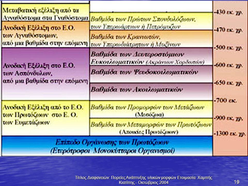 Τίτλος Διαφανειών: Πορείες Ανάπτυξης υλικών μορφών Ετοιμασία: Χαμπής Κιατίπης - Οκτώβριος 2004 19