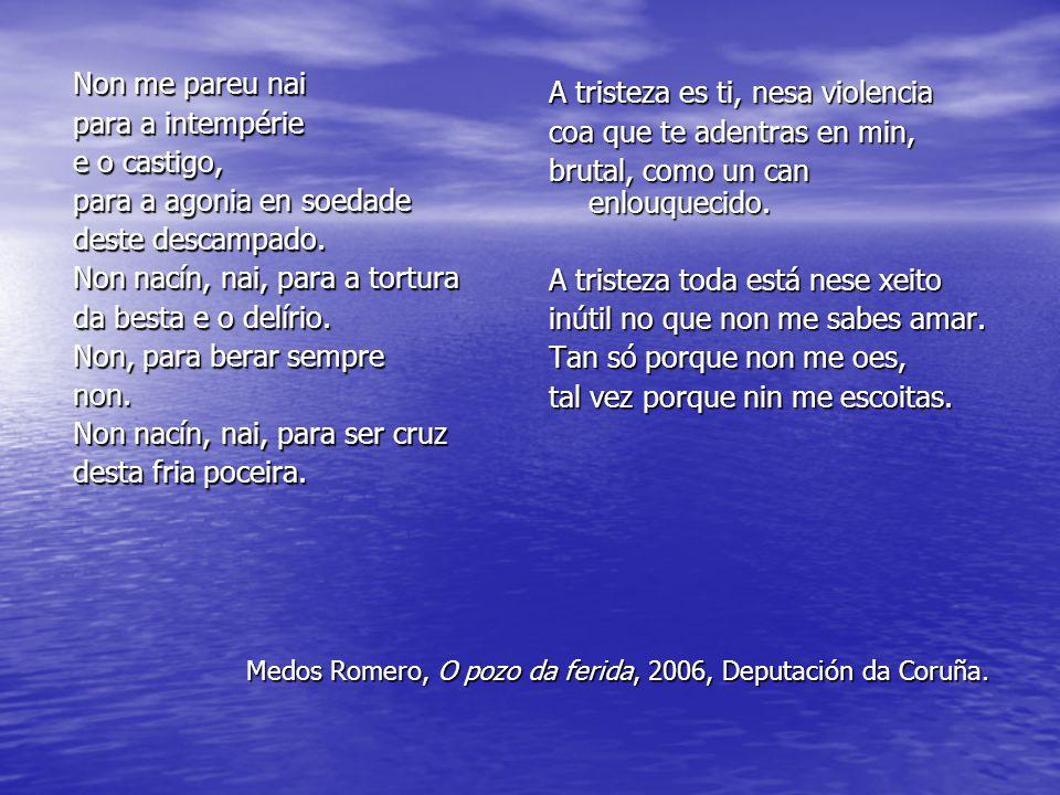 Medos Romero, O pozo da ferida, 2006, Deputación da Coruña. Non me pareu nai para a intempérie e o castigo, para a agonia en soedade deste descampado.