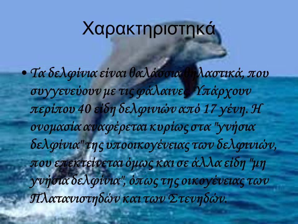 Χαρακτηριστηκά Τα δελφίνια είναι θαλάσσια θηλαστικά, που συγγενεύουν με τις φάλαινες. Υπάρχουν περίπου 40 είδη δελφινιών από 17 γένη. Η ονομασία αναφέ