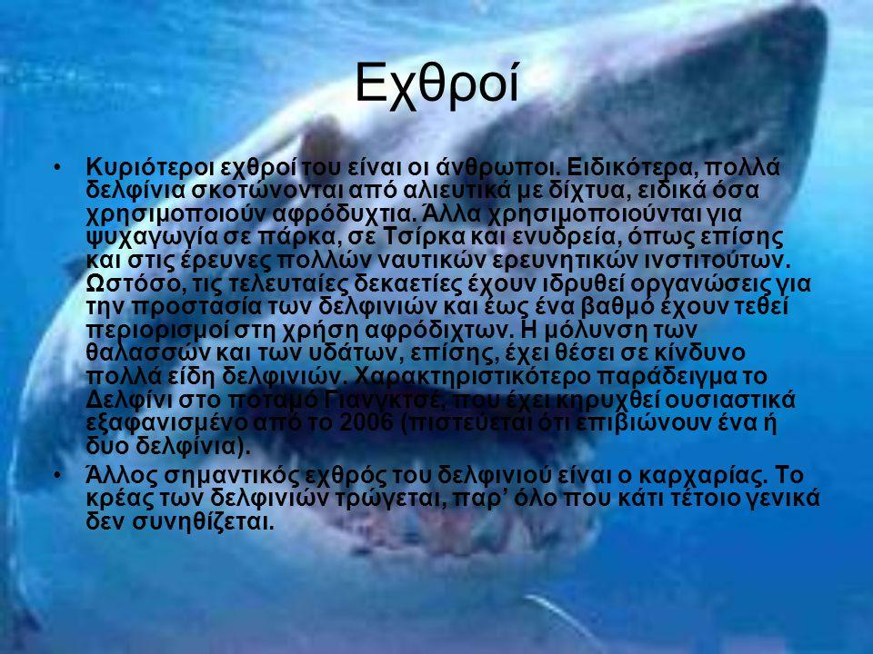 Εχθροί Κυριότεροι εχθροί του είναι οι άνθρωποι. Ειδικότερα, πολλά δελφίνια σκοτώνονται από αλιευτικά με δίχτυα, ειδικά όσα χρησιμοποιούν αφρόδυχτια. Ά