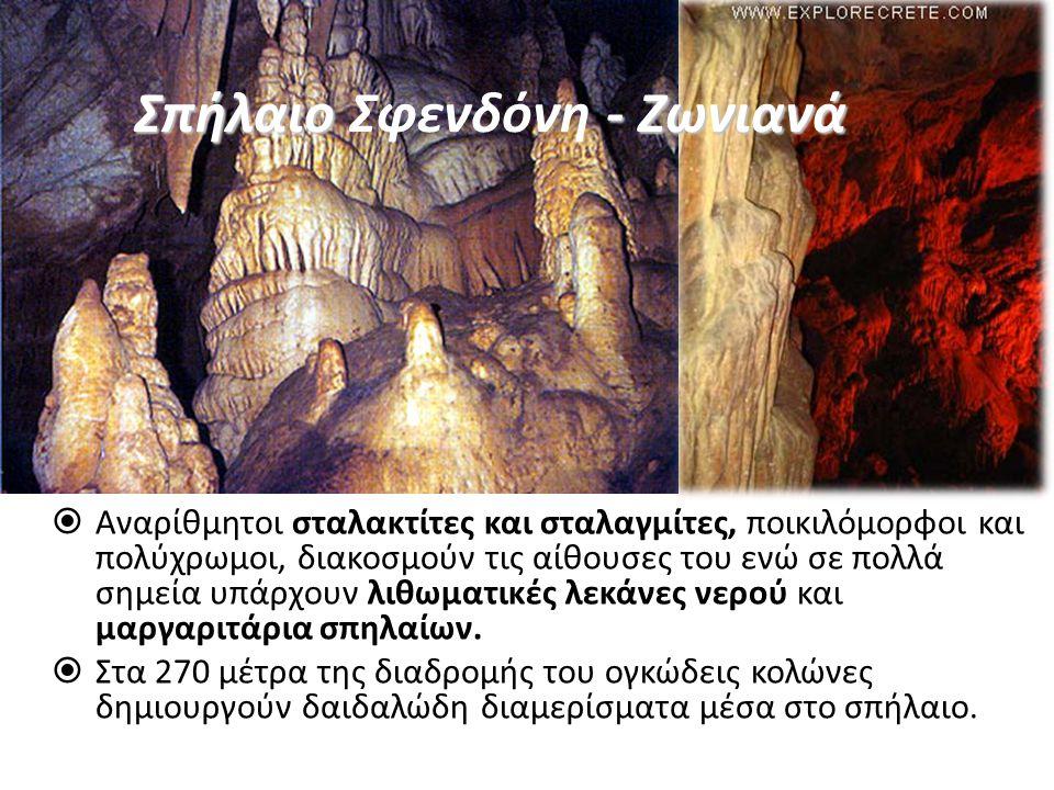  Αναρίθμητοι σταλακτίτες και σταλαγμίτες, ποικιλόμορφοι και πολύχρωμοι, διακοσμούν τις αίθουσες του ενώ σε πολλά σημεία υπάρχουν λιθωματικές λεκάνες νερού και μαργαριτάρια σπηλαίων.