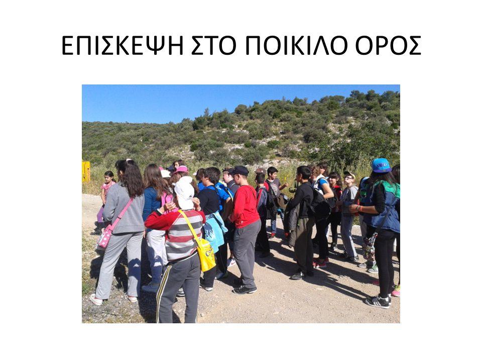 ΕΠΙΣΚΕΨΗ ΣΤΟ ΠΟΙΚΙΛΟ ΟΡΟΣ