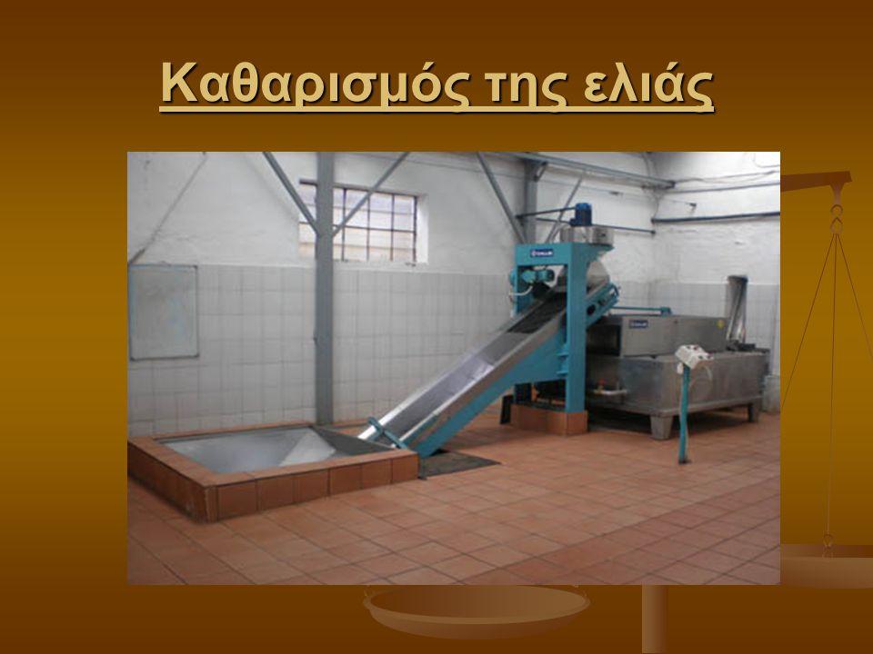 Καθαρισμός της ελιάς