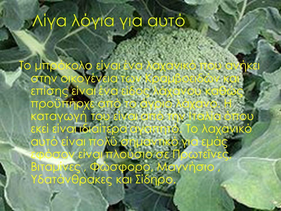 Το μπρόκολο είναι ένα λαχανικό που ανήκει στην οικογένεια των Κραμβοειδών και επίσης είναι ένα είδος λάχανου καθώς προϋπήρχε από το άγριο λάχανο. Η κα
