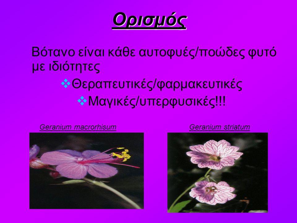 Βότανο είναι κάθε αυτοφυές/ποώδες φυτό με ιδιότητες  Θεραπευτικές/φαρμακευτικές  Μαγικές/υπερφυσικές!!!Ορισμός Geranium macrorhisumGeranium striatum