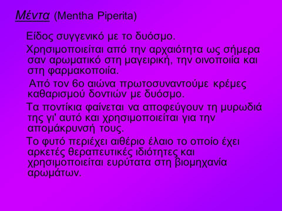 Μέντα (Mentha Piperita) Είδος συγγενικό με το δυόσμο. Χρησιμοποιείται από την αρχαιότητα ως σήμερα σαν αρωματικό στη μαγειρική, την οινοποιία και στη