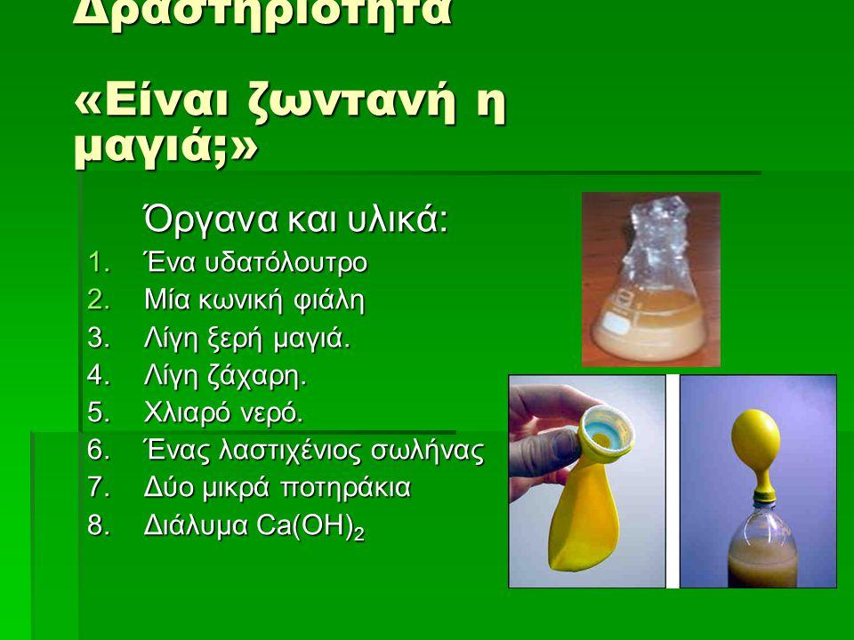 Δραστηριότητα «Είναι ζωντανή η μαγιά;» Όργανα και υλικά: 1.Ένα υδατόλουτρο 2.Μία κωνική φιάλη 3.Λίγη ξερή μαγιά.