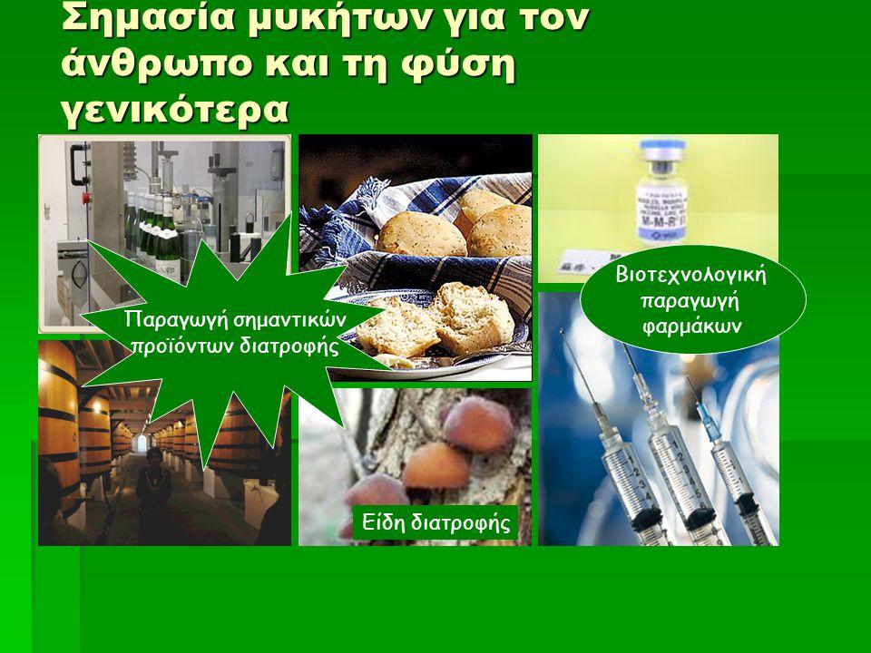 Σημασία μυκήτων για τον άνθρωπο και τη φύση γενικότερα Είδη διατροφής Βιοτεχνολογική παραγωγή φαρμάκων Παραγωγή σημαντικών προϊόντων διατροφής