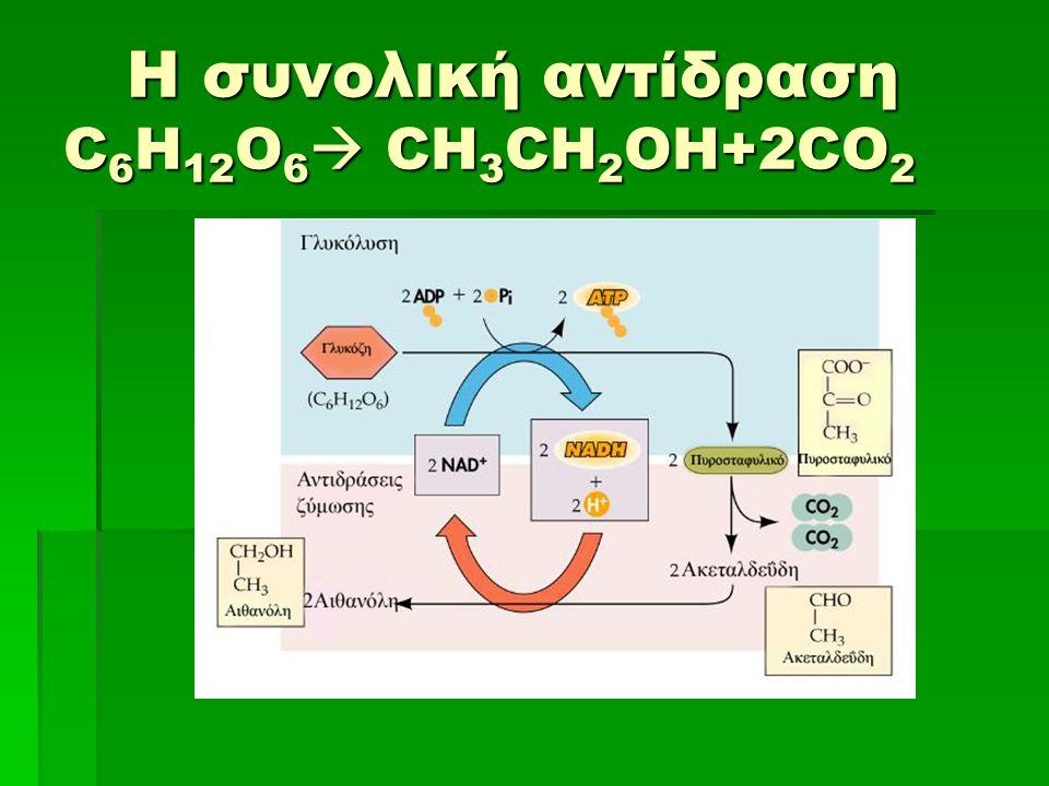 Η συνολική αντίδραση C 6 H 12 O 6  CH 3 CH 2 OH+2CO 2 Η συνολική αντίδραση C 6 H 12 O 6  CH 3 CH 2 OH+2CO 2